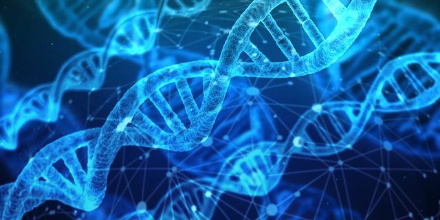 1基因dna-3539309_640